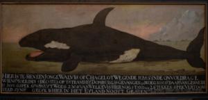 de orka